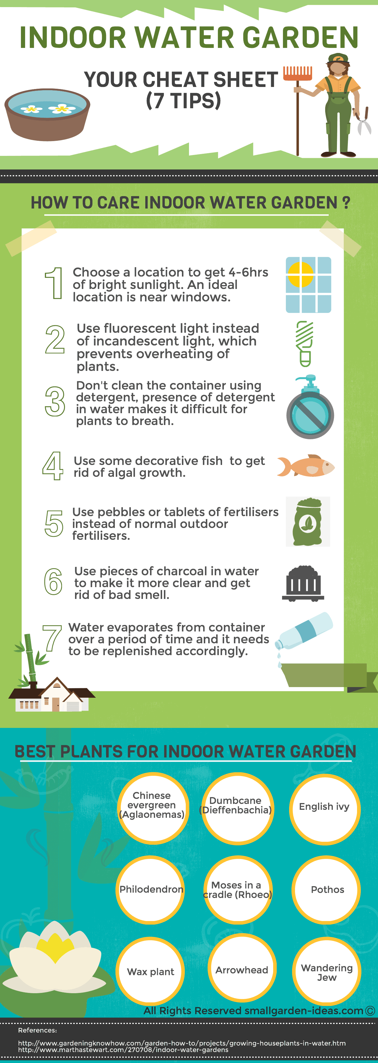 indoor water garden infographics