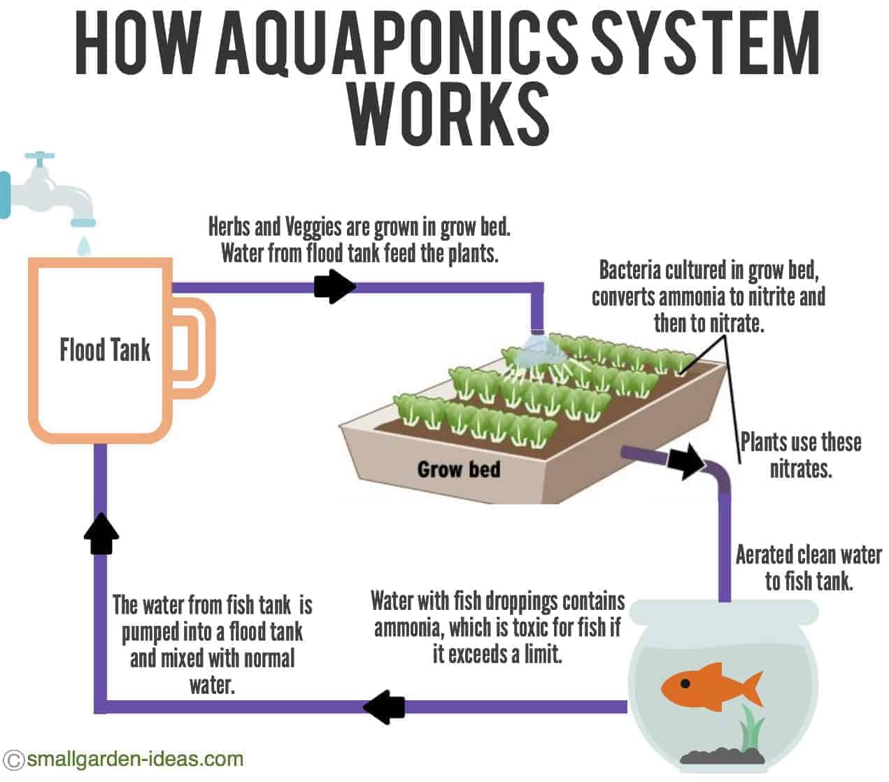Aquaponics Systems For Indoor Gardening Small Garden Ideas Make A Block Diagram How Aquaponic System Works